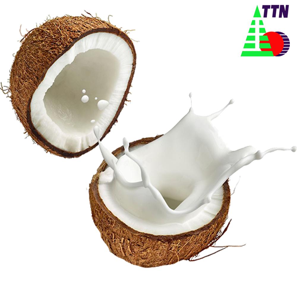Bột Cốt Sữa Dừa